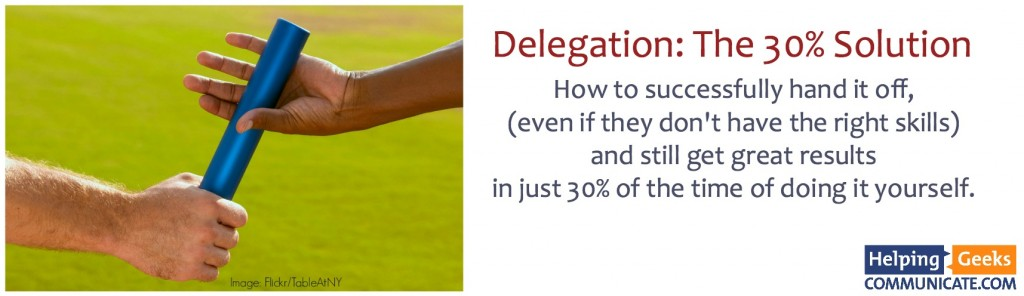 Delegation - the 30 percent solution logo